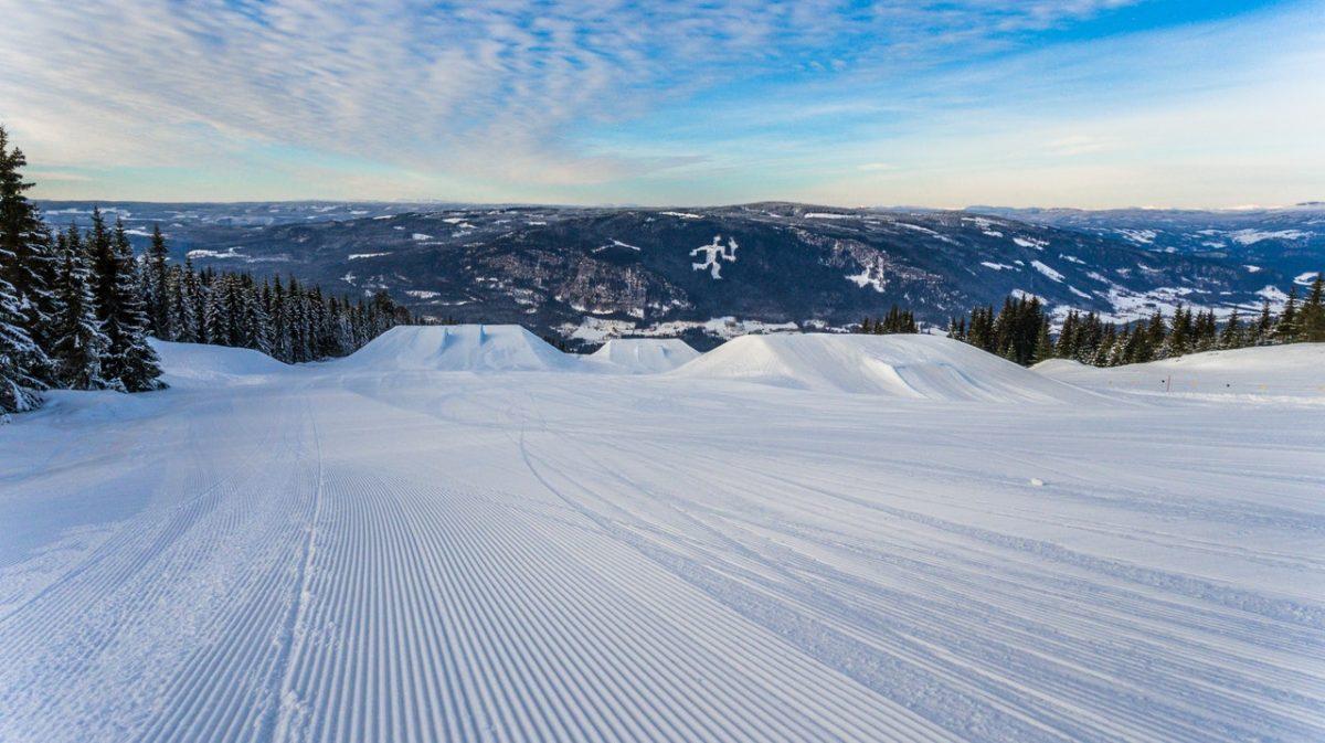 Skifahren mit Kindern - Rückenprotektor für Kinder